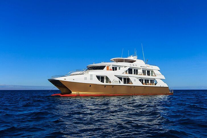 Schiff Golden Galapagos Cruises Elite
