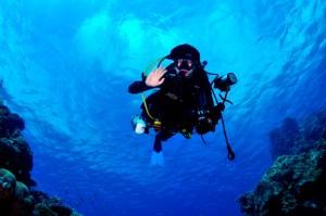 Tauchen Australien Belize Designreisen